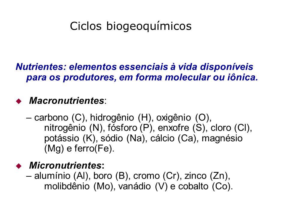 Nutrientes: elementos essenciais à vida disponíveis para os produtores, em forma molecular ou iônica. Macronutrientes: – carbono (C), hidrogênio (H),
