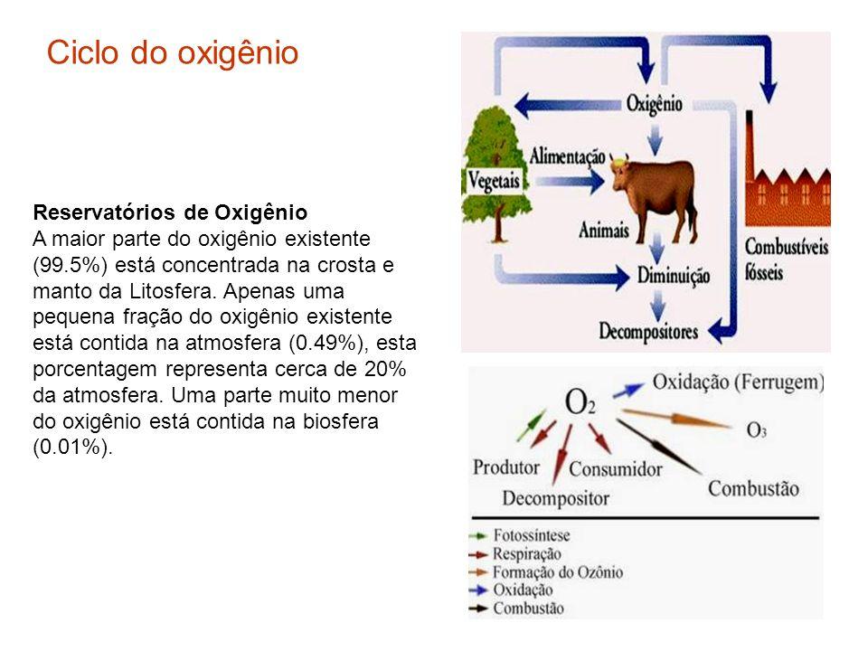 Reservatórios de Oxigênio A maior parte do oxigênio existente (99.5%) está concentrada na crosta e manto da Litosfera. Apenas uma pequena fração do ox