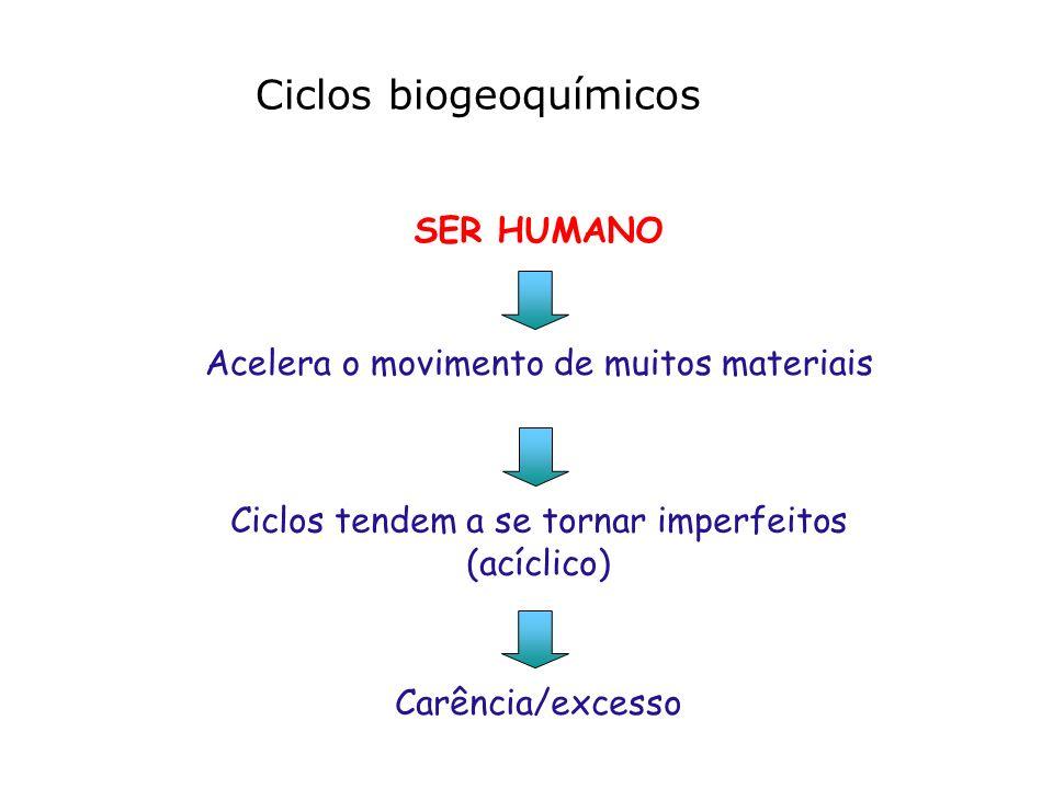 SER HUMANO Ciclos biogeoquímicos Acelera o movimento de muitos materiais Carência/excesso Ciclos tendem a se tornar imperfeitos (acíclico)