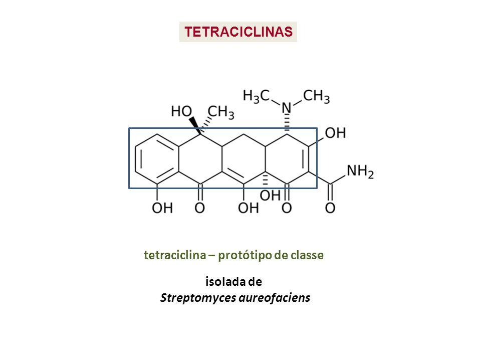 TETRACICLINAS tetraciclina – protótipo de classe isolada de Streptomyces aureofaciens
