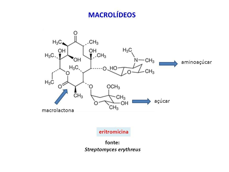 eritromicina MACROLÍDEOS fonte: Streptomyces erythreus aminoaçúcar açúcar macrolactona