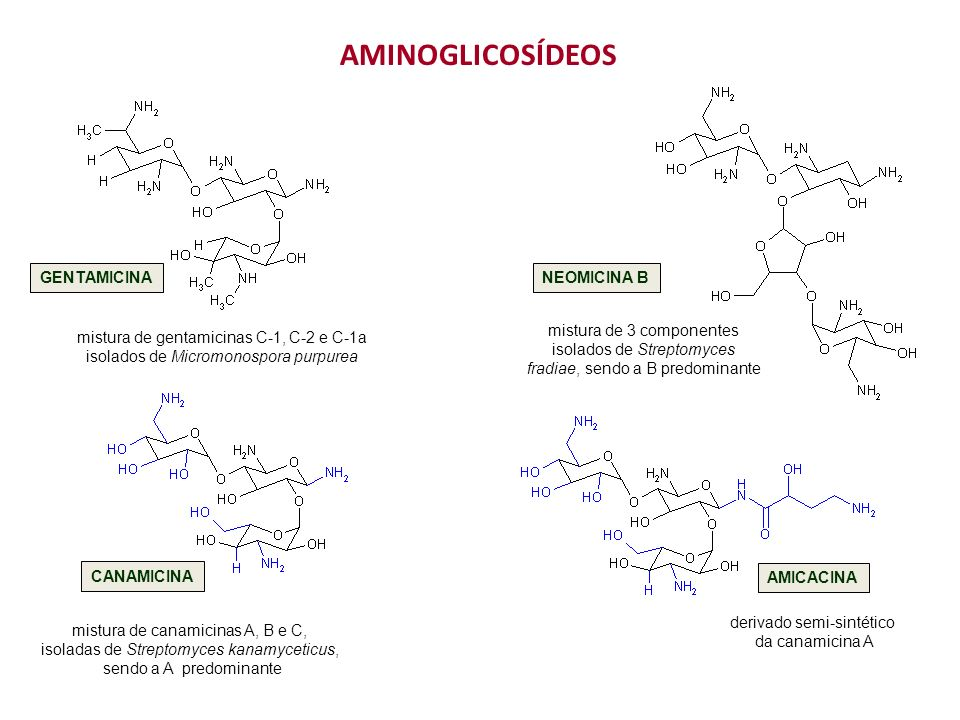 GENTAMICINANEOMICINA B mistura de 3 componentes isolados de Streptomyces fradiae, sendo a B predominante mistura de gentamicinas C-1, C-2 e C-1a isolados de Micromonospora purpurea AMINOGLICOSÍDEOS CANAMICINA mistura de canamicinas A, B e C, isoladas de Streptomyces kanamyceticus, sendo a A predominante AMICACINA derivado semi-sintético da canamicina A