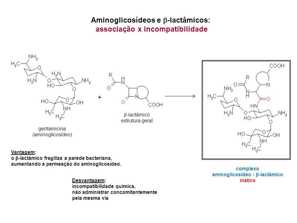 Aminoglicosídeos e -lactâmicos: associação x incompatibilidade -lactâmico estrutura geral gentamicina (aminoglicosídeo) + complexo aminoglicosídeo - -lactâmico inativo Vantagem: o -lactâmico fragiliza a parede bacteriana, aumentando a permeação do aminoglicosídeo.