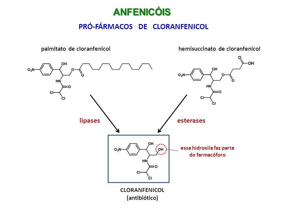 Hemissuccinato de cloranfenicol comercializado na forma liofilizada para uso IV estabilidade em meio aquoso: só 48h ANFENICÓIS