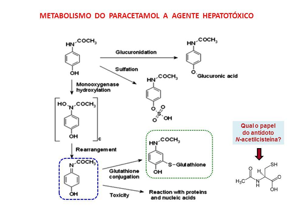 METABOLISMO DO PARACETAMOL A AGENTE HEPATOTÓXICO Qual o papel do antídoto N-acetilcisteína?