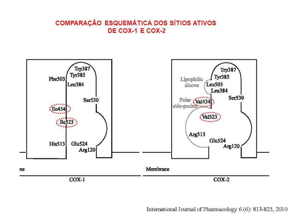 COMPARAÇÃO ESQUEMÁTICA DOS SÍTIOS ATIVOS DE COX-1 E COX-2