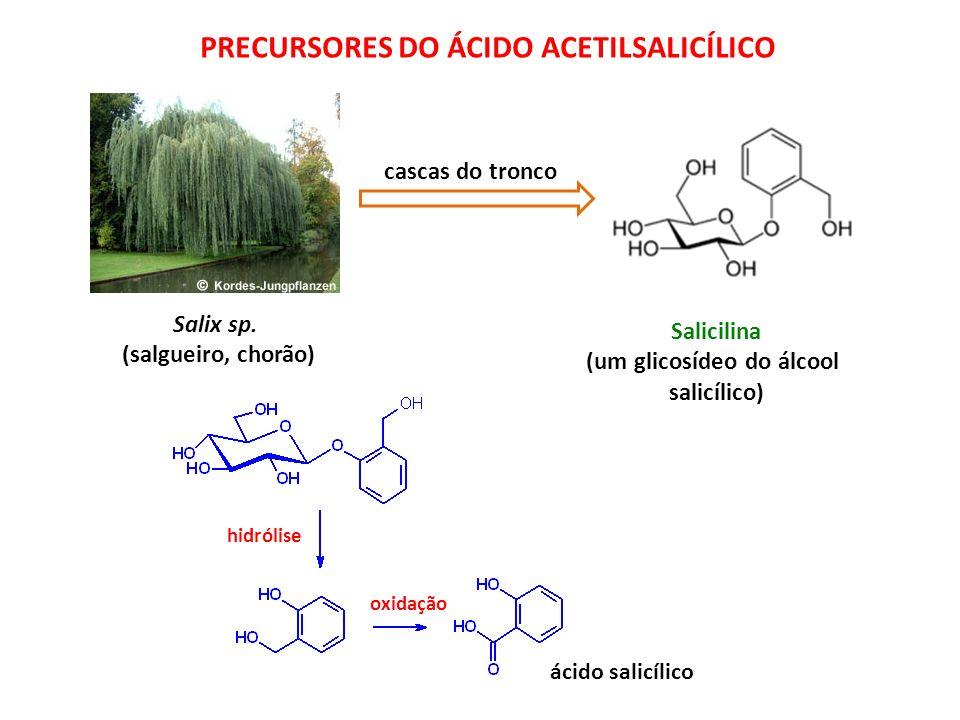 Salix sp. (salgueiro, chorão) Salicilina (um glicosídeo do álcool salicílico) cascas do tronco hidrólise oxidação ácido salicílico PRECURSORES DO ÁCID