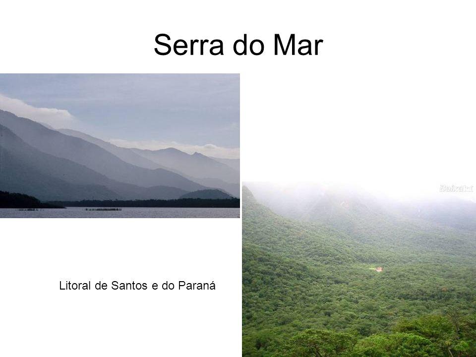 Serra do Mar Litoral de Santos e do Paraná