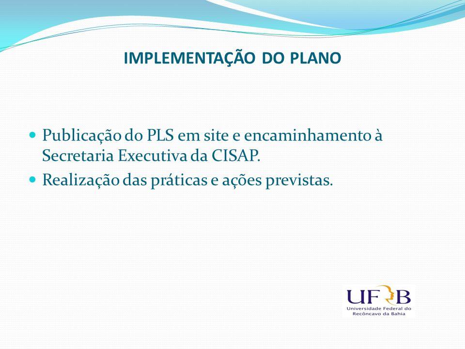IMPLEMENTAÇÃO DO PLANO Publicação do PLS em site e encaminhamento à Secretaria Executiva da CISAP. Realização das práticas e ações previstas.