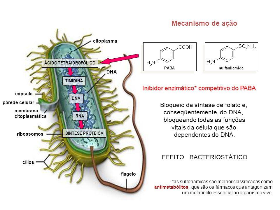 Mecanismo de ação citoplasma DNA flagelo cílios ribossomos membrana citoplasmática parede celular cápsula ÁCIDO TETRAIDROFÓLICO TIMIDINA DNA RNA SÍNTE
