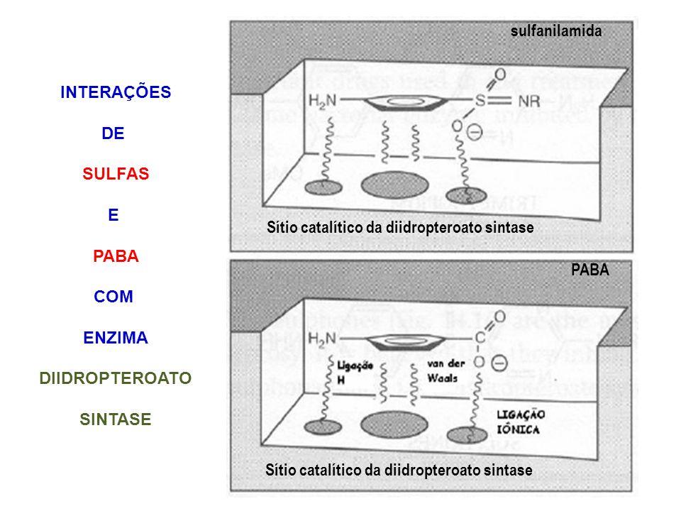 Sítio catalítico da diidropteroato sintase PABA Sítio catalítico da diidropteroato sintase sulfanilamida INTERAÇÕES DE SULFAS E PABA COM ENZIMA DIIDRO