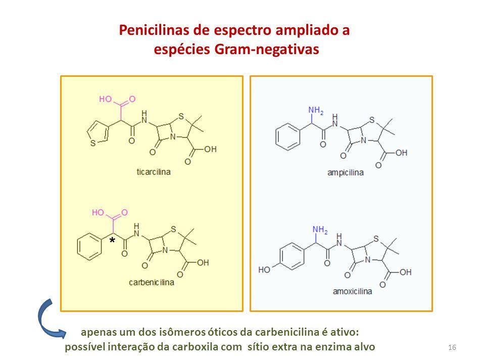 Penicilinas de espectro ampliado a espécies Gram-negativas apenas um dos isômeros óticos da carbenicilina é ativo: possível interação da carboxila com
