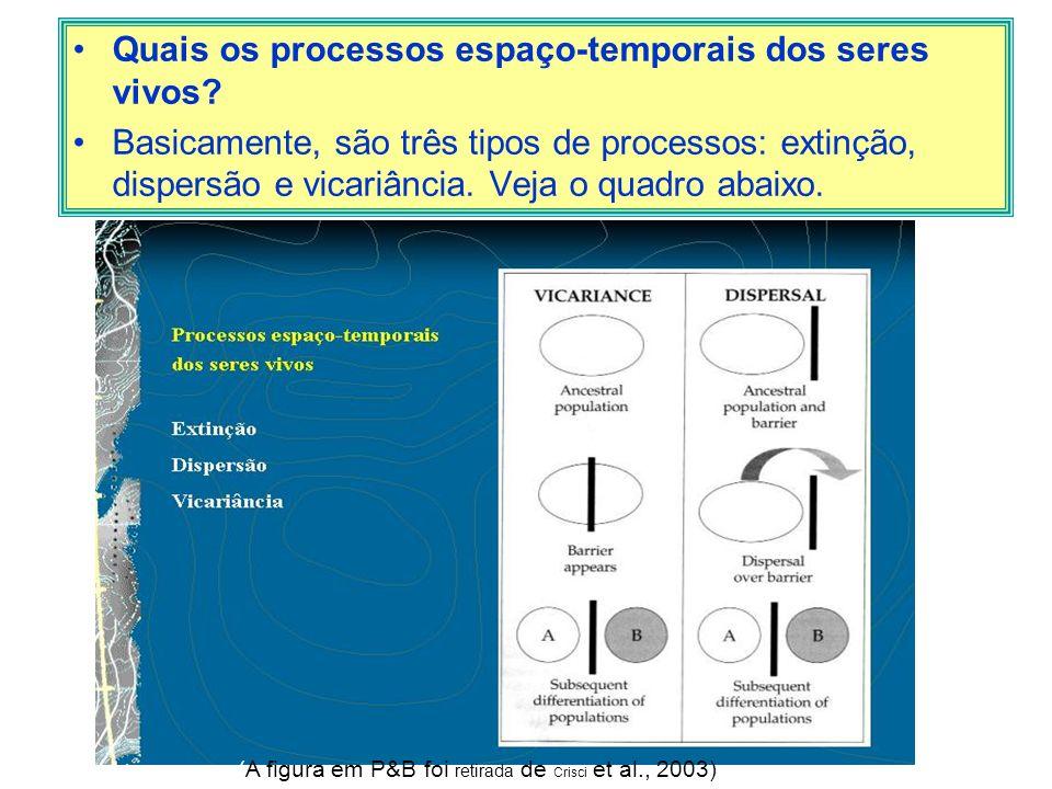 Quais os processos espaço-temporais dos seres vivos? Basicamente, são três tipos de processos: extinção, dispersão e vicariância. Veja o quadro abaixo