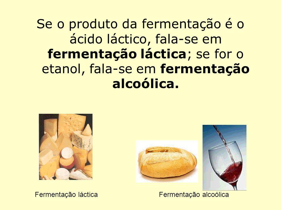 Se o produto da fermentação é o ácido láctico, fala-se em fermentação láctica; se for o etanol, fala-se em fermentação alcoólica. Fermentação lácticaF