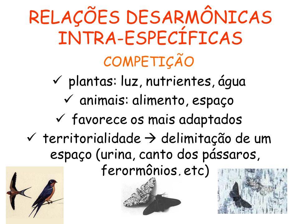 RELAÇÕES DESARMÔNICAS INTRA-ESPECÍFICAS COMPETIÇÃO plantas: luz, nutrientes, água animais: alimento, espaço favorece os mais adaptados territorialidad