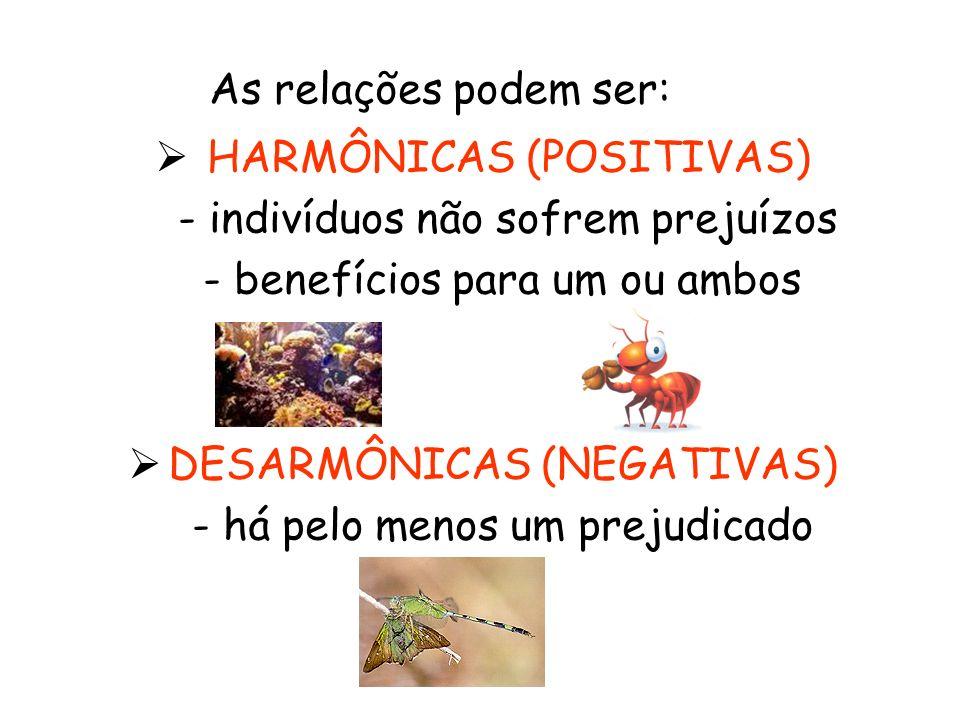 RELAÇÕES HARMÔNICAS INTRA- ESPECÍFICAS SOCIEDADE Divisão do trabalho Interdependência comportamental entre os indivíduos da população Exemplos: formigas, abelhas, cupins, vespas
