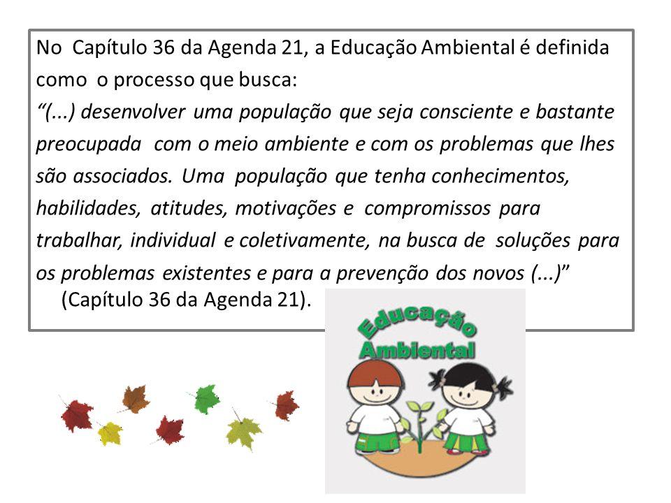 No Capítulo 36 da Agenda 21, a Educação Ambiental é definida como o processo que busca: (...) desenvolver uma população que seja consciente e bastante