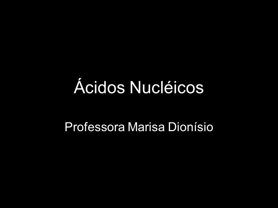 Ácidos Nucléicos Professora Marisa Dionísio