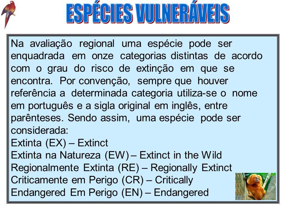 Vulnerável (VU) – Vulnerable Quase Ameaçada (NT) – Near Threatened Menos Preocupante (LC) – Least Concern Dados Insuficientes (DD) – Data Deficient Não Aplicável (NA) – Not Applicable Não Avaliada (NE) – Not Evaluated Observação: Regionalmente Extinta, nesse caso, se equivale a Extinta no Brasil.