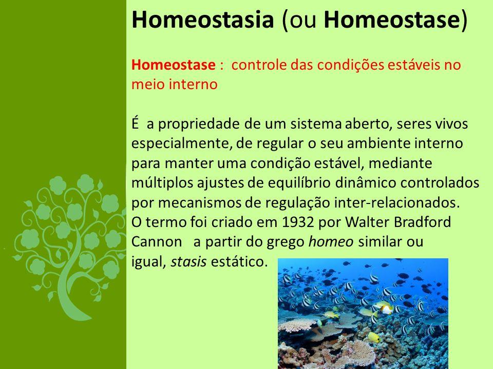 Homeostasia (ou Homeostase) Homeostase : controle das condições estáveis no meio interno É a propriedade de um sistema aberto, seres vivos especialmen