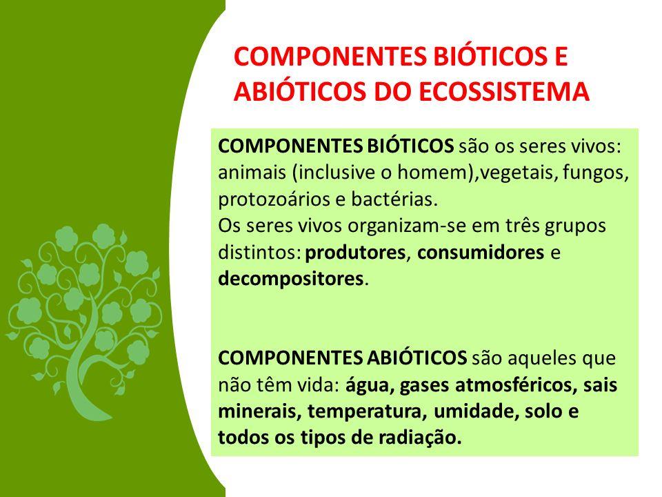 COMPONENTES BIÓTICOS E ABIÓTICOS DO ECOSSISTEMA COMPONENTES BIÓTICOS são os seres vivos: animais (inclusive o homem),vegetais, fungos, protozoários e
