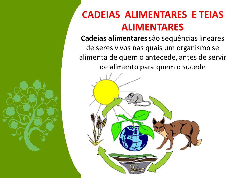CADEIAS ALIMENTARES E TEIAS ALIMENTARES Cadeias alimentares são sequências lineares de seres vivos nas quais um organismo se alimenta de quem o antece
