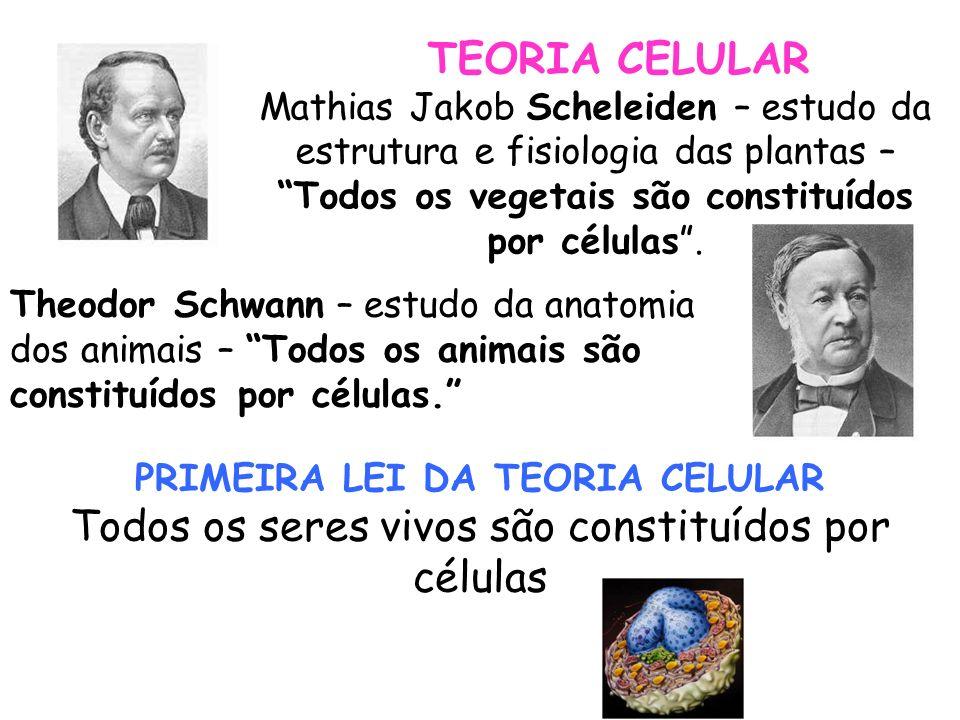 SEGUNDA LEI DA TEORIA CELULAR (1855 – Rudolf Virchow) Omnis cellula e cellula – Toda célula se origina de outra célula TERCEIRA LEI DA BIOLOGIA CELULAR A célula é a sede das reações metabólicas do organismo.
