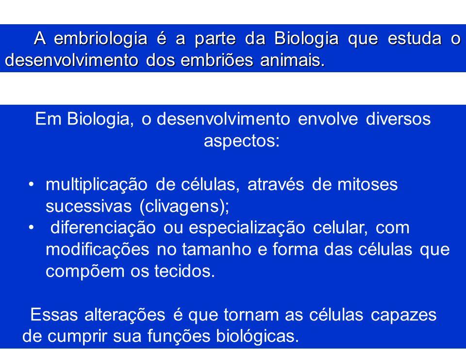 A embriologia é a parte da Biologia que estuda o desenvolvimento dos embriões animais. Em Biologia, o desenvolvimento envolve diversos aspectos: multi