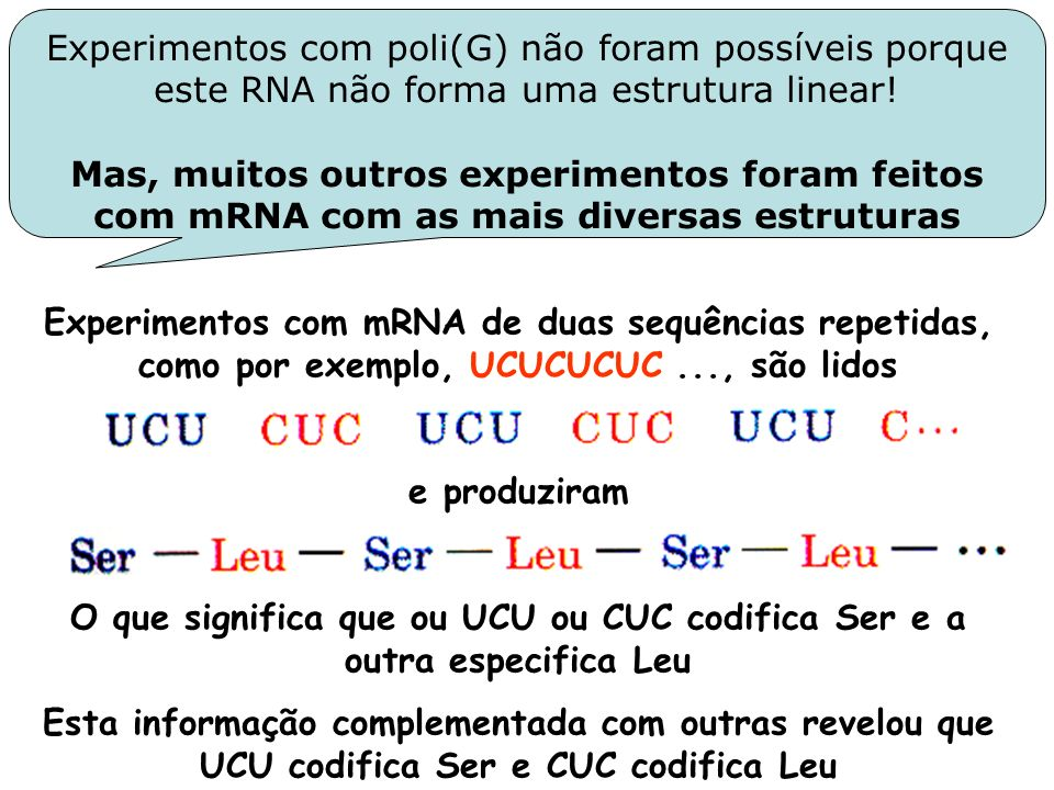Experimentos com mRNA de duas sequências repetidas, como por exemplo, UCUCUCUC..., são lidos e produziram O que significa que ou UCU ou CUC codifica S