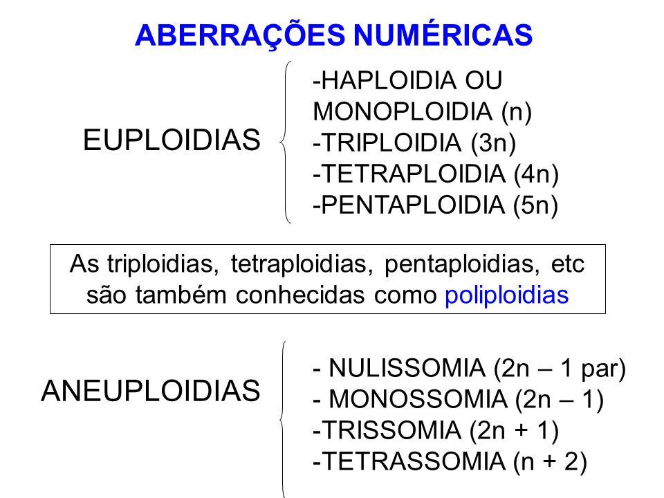 -HAPLOIDIA OU MONOPLOIDIA (n) -TRIPLOIDIA (3n) -TETRAPLOIDIA (4n) -PENTAPLOIDIA (5n) As triploidias, tetraploidias, pentaploidias, etc são também conh