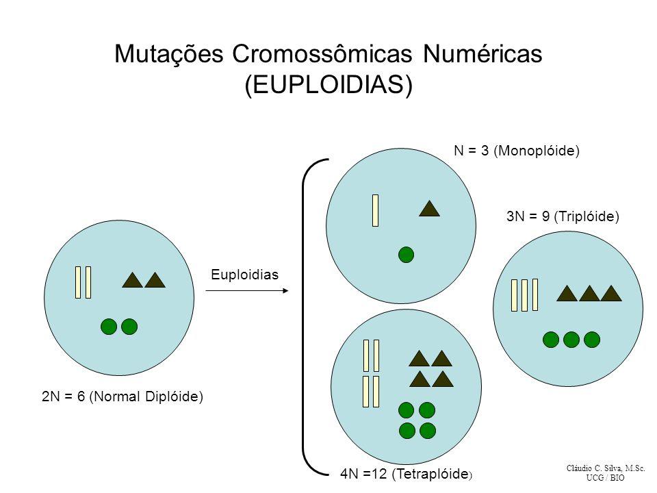 Cláudio C. Silva, M.Sc. UCG / BIO 2N = 6 (Normal Diplóide) N = 3 (Monoplóide) 3N = 9 (Triplóide) 4N =12 (Tetraplóide ) Euploidias Mutações Cromossômic