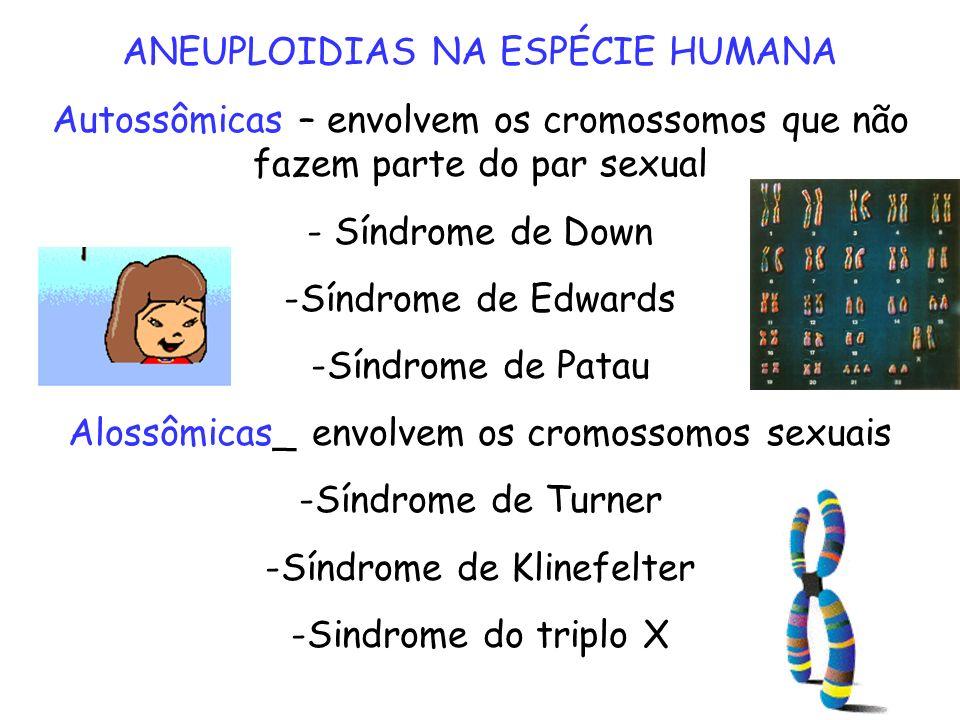ANEUPLOIDIAS NA ESPÉCIE HUMANA Autossômicas – envolvem os cromossomos que não fazem parte do par sexual - Síndrome de Down -Síndrome de Edwards -Síndr
