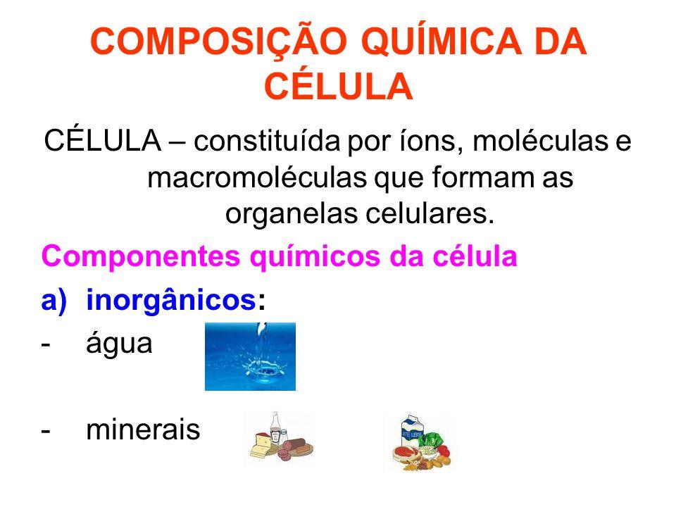 COMPOSIÇÃO QUÍMICA DA CÉLULA CÉLULA – constituída por íons, moléculas e macromoléculas que formam as organelas celulares.