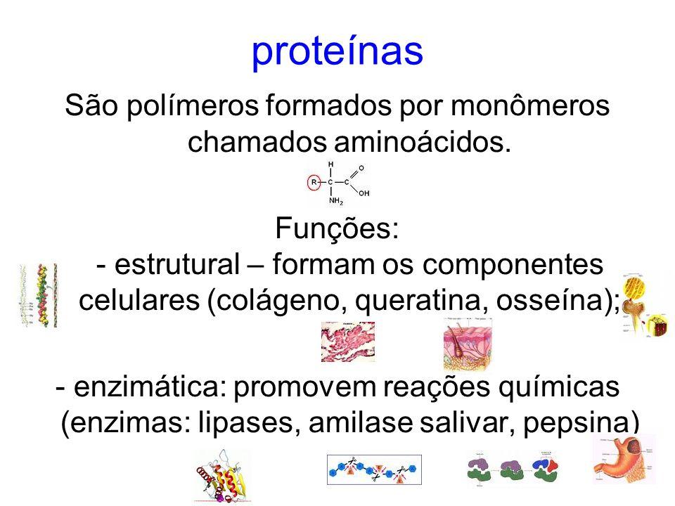 proteínas São polímeros formados por monômeros chamados aminoácidos.