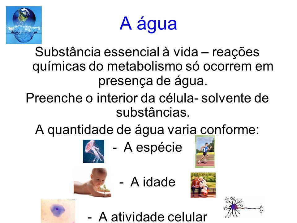 Ácidos nucleicos -Os ácidos nucléicos são macromoléculas de natureza química, formadas por nucleotídeos, compondo o material genético contido nas células de todos os seres vivos.