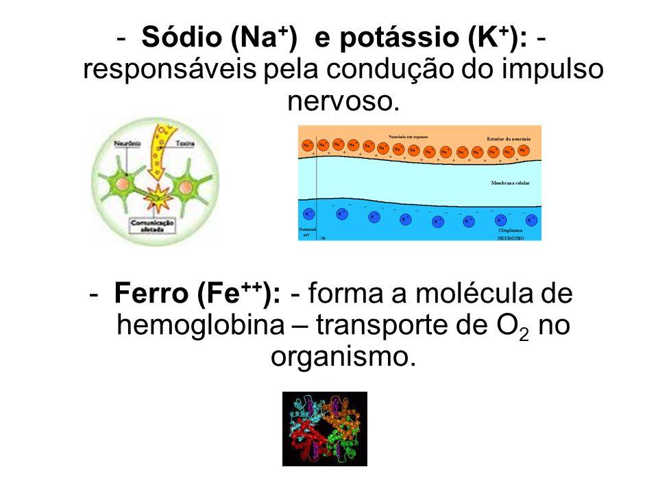 -Sódio (Na + ) e potássio (K + ): - responsáveis pela condução do impulso nervoso.