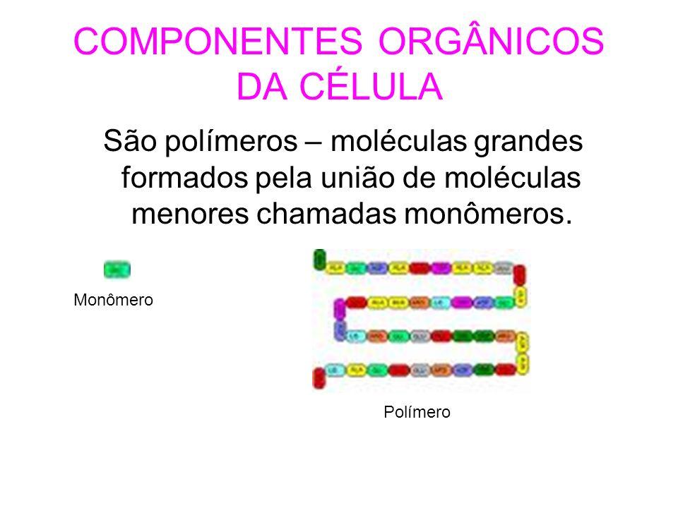 carboidratos Chamados de glicídeos ou açúcares.São formados por carbono, hidrogênio e oxigênio.