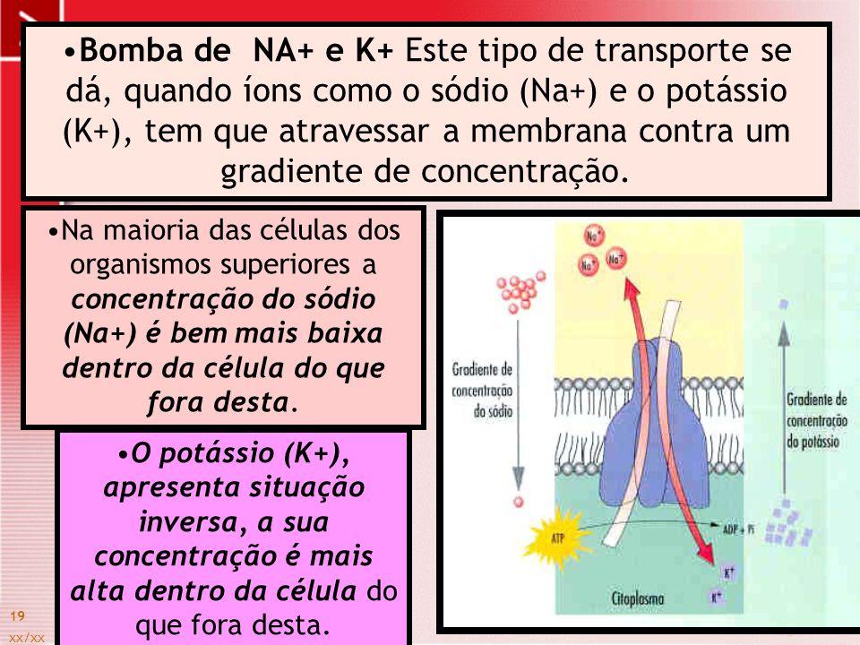 xx/xx 19 Bomba de NA+ e K+ Este tipo de transporte se dá, quando íons como o sódio (Na+) e o potássio (K+), tem que atravessar a membrana contra um gr