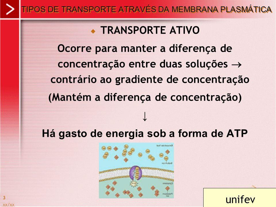xx/xx 3 TIPOS DE TRANSPORTE ATRAVÉS DA MEMBRANA PLASMÁTICA TRANSPORTE ATIVO Ocorre para manter a diferença de concentração entre duas soluções contrár