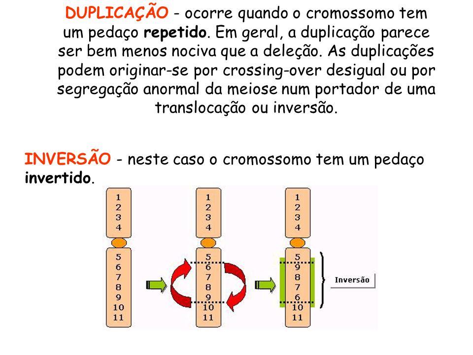 DUPLICAÇÃO - ocorre quando o cromossomo tem um pedaço repetido. Em geral, a duplicação parece ser bem menos nociva que a deleção. As duplicações podem