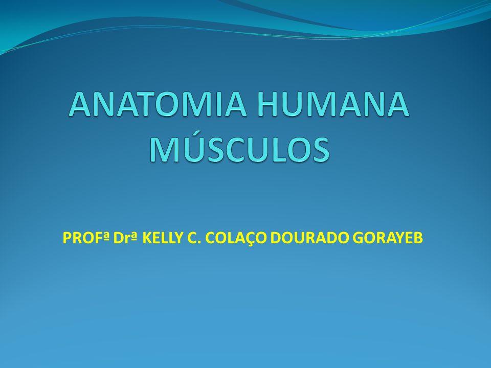 PROFª Drª KELLY C. COLAÇO DOURADO GORAYEB