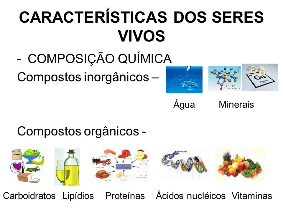 CARACTERÍSTICAS DOS SERES VIVOS -COMPOSIÇÃO QUÍMICA Compostos inorgânicos – Compostos orgânicos - Água Minerais Carboidratos Lipídios Proteínas Ácidos