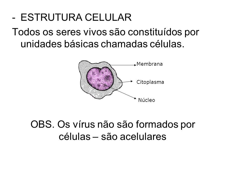 -ESTRUTURA CELULAR Todos os seres vivos são constituídos por unidades básicas chamadas células. Membrana Citoplasma Núcleo OBS. Os vírus não são forma