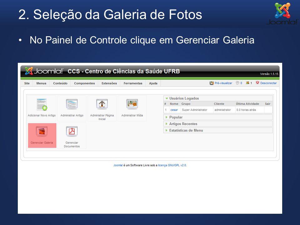 2. Seleção da Galeria de Fotos No Painel de Controle clique em Gerenciar Galeria