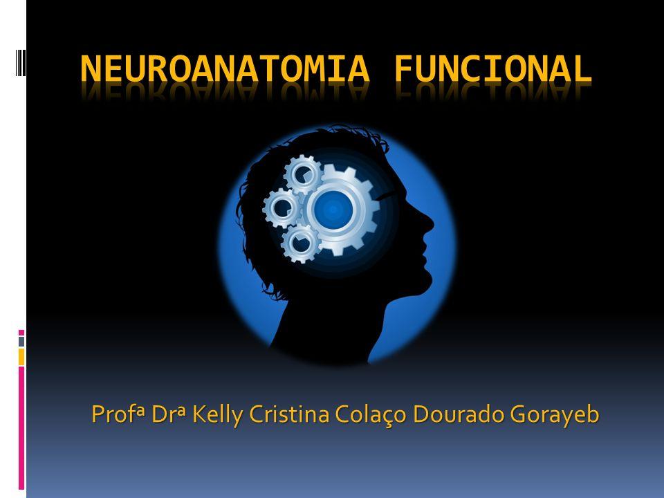 Profª Drª Kelly Cristina Colaço Dourado Gorayeb