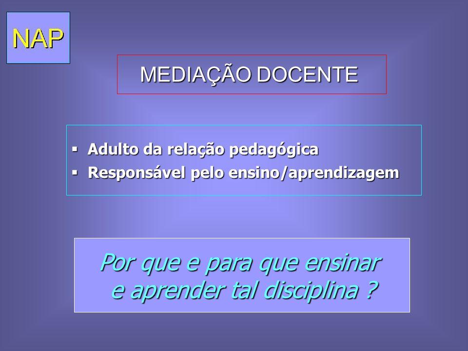 MEDIAÇÃO DOCENTE MEDIAÇÃO DOCENTE Adulto da relação pedagógica Adulto da relação pedagógica Responsável pelo ensino/aprendizagem Responsável pelo ensi