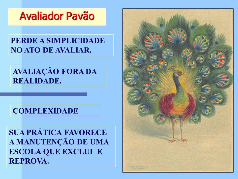 Avaliador Pavão PERDE A SIMPLICIDADE NO ATO DE AVALIAR. COMPLEXIDADE AVALIAÇÃO FORA DA REALIDADE. SUA PRÁTICA FAVORECE A MANUTENÇÃO DE UMA ESCOLA QUE