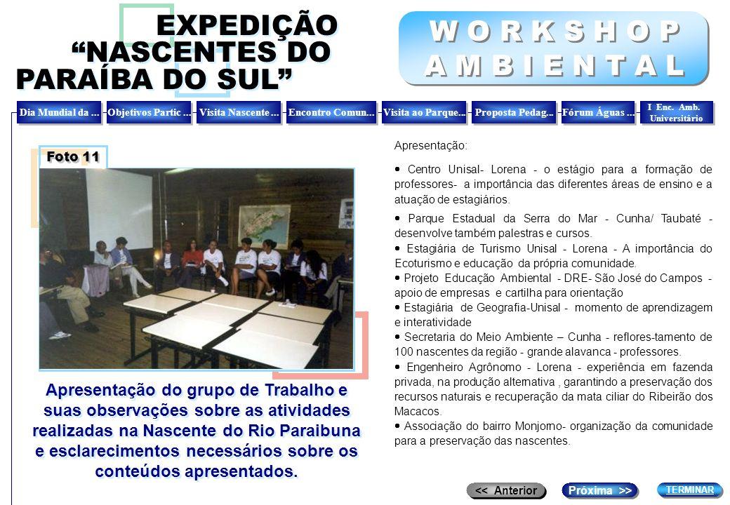Apresentação do grupo de Trabalho e suas observações sobre as atividades realizadas na Nascente do Rio Paraibuna e esclarecimentos necessários sobre o