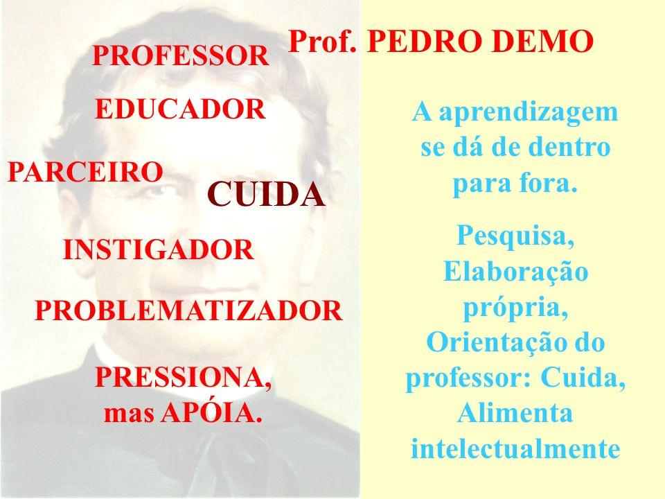 Prof. PEDRO DEMO Informação e Conhecimento Ensinar e aprender Aprendizagem permanente Viver é aprender. Valorização da Pedagogia Países do primeiro mu