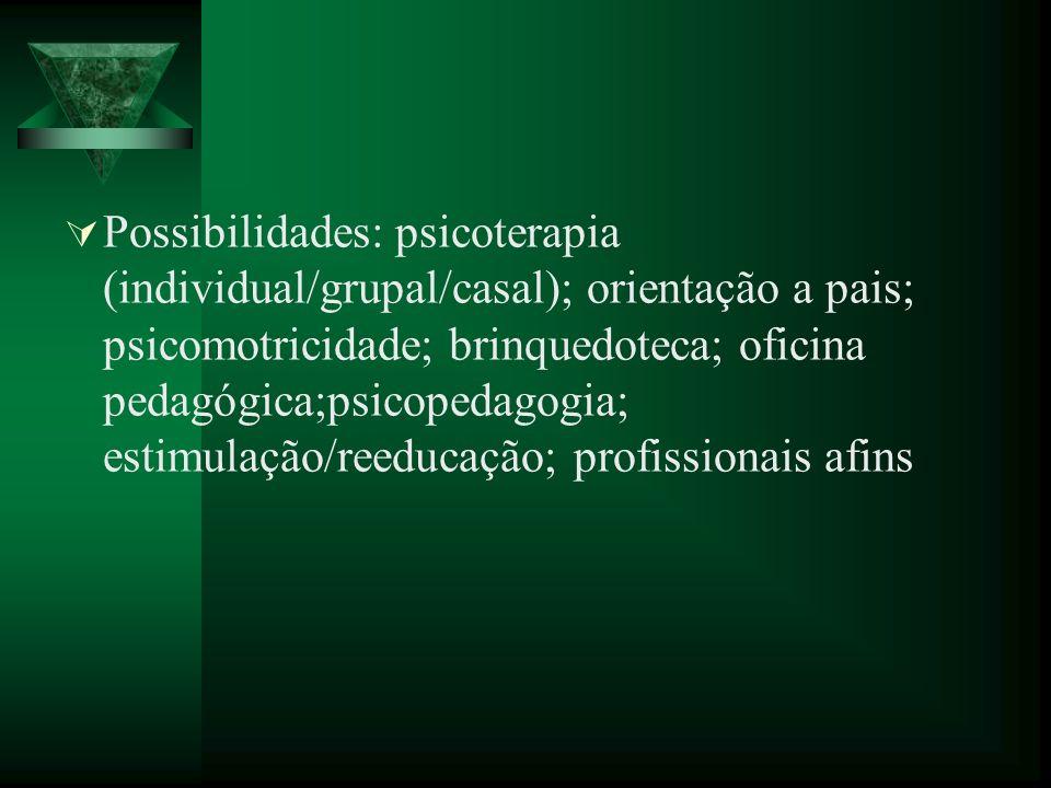 Possibilidades: psicoterapia (individual/grupal/casal); orientação a pais; psicomotricidade; brinquedoteca; oficina pedagógica;psicopedagogia; estimul